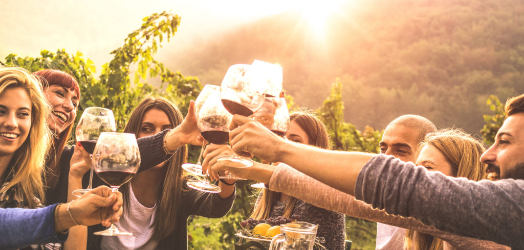 A group of people raise wine glasses in a vineyard